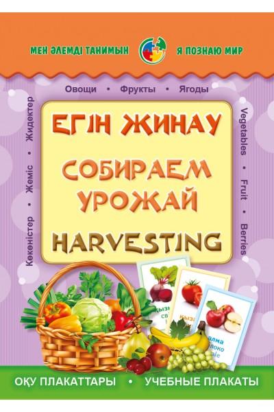 Егін жинау. Собираем урожай. Harvesting. Плакаттар топтамасы (24 дана)